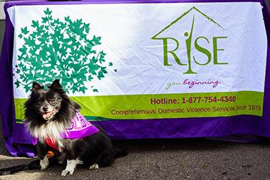 Rise - Comprehensive Domestic Violence Services - Binghamton, NY